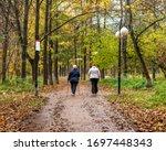Elderly People Walk Together In ...