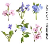 Stock photo wildflowers set isolated on white background 169754849