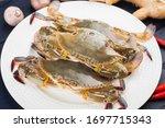 Fresh Redspot Swimming Crab ...