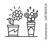 living plants vs artificial...