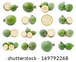 collection of feijoa acca... | Shutterstock . vector #169792268