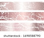 vector rose gold marble... | Shutterstock .eps vector #1698588790
