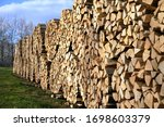 Stacks Of Firewood Getting...