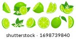cartoon lime. limes slices ...   Shutterstock .eps vector #1698739840