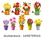 mega collection of spring and... | Shutterstock .eps vector #1698759010