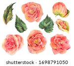 watercolor vintage spring set... | Shutterstock . vector #1698791050