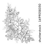 hand drawn rose flowers bunch... | Shutterstock .eps vector #1699058350