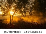 Small photo of Golden sunrise over a foggy rural pond in Clare County.