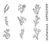 vector collection of hand drawn ... | Shutterstock .eps vector #1699325509