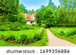 Summer Green Rural Cottage Path....