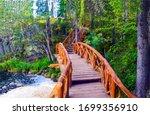 Forest wooden bridge way view....
