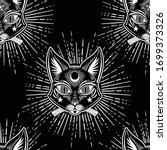 black cat on mystical... | Shutterstock .eps vector #1699373326