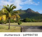 mauritius. the road at the hill ... | Shutterstock . vector #169984730
