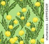 Yellow Dandelions Wildflowers...