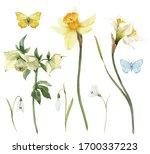 Beautiful Watercolor Floral Se...