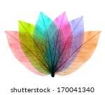 color leaves abstract shape on... | Shutterstock . vector #170041340