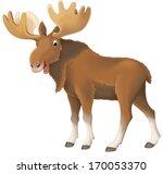 Cartoon Animal   Illustration...