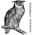 great horned owl is... | Shutterstock .eps vector #1700842423