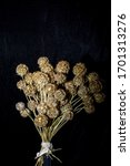Small photo of A bouquet of scabiosis balls on a black background. The flowers of scabiosis in their form embolden the molecule covid - 19.