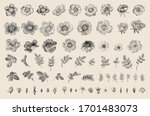 wild roses. independent floral... | Shutterstock .eps vector #1701483073