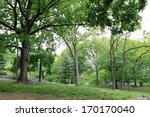 central park at spring time ... | Shutterstock . vector #170170040