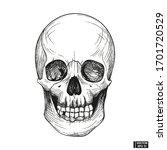 hand drawn vintage human skull... | Shutterstock .eps vector #1701720529