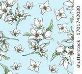 Jasmine White Flowers On Blue...
