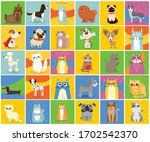 Cool Cats And Dogs. Vector...