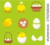 colorful cartoon chicken eggs...   Shutterstock . vector #1702568266