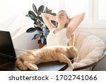 the cat is lying on the table... | Shutterstock . vector #1702741066