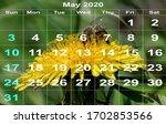 Calendar With May  2020. Natur...