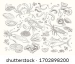 seafood bid collection of line... | Shutterstock .eps vector #1702898200