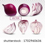 collection fresh red onion... | Shutterstock .eps vector #1702960636