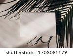 summer tropical stationery...   Shutterstock . vector #1703081179