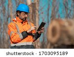 Forestry technician using digital tablet computer in forest for logging data collecting during deforestation - stock photo