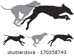 Stock vector the hunting hound dogs run foxhound vector silhouettes 170358743
