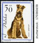 poland   circa 1963  a stamp... | Shutterstock . vector #170383658