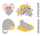 cute british shorthair cat...   Shutterstock .eps vector #1704211639