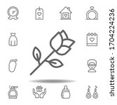 mothers day rose outline icon.... | Shutterstock .eps vector #1704224236