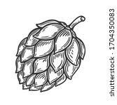 Illustration Of Beer Hop In...