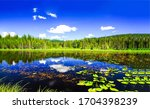 Summer Forest Lake Water...