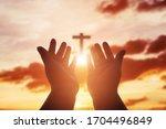 Human Hands Open Palm Up...