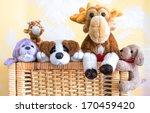 Box Full Of Pet Toys