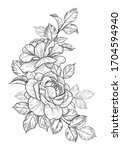 hand drawn rose flower and... | Shutterstock .eps vector #1704594940