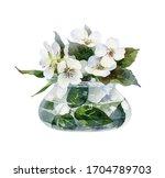 beautiful little jasmine... | Shutterstock . vector #1704789703