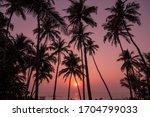 Sunset In Goa  January 2020