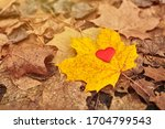 Heart On Maple Leaf. Open Pure...
