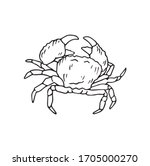 Crab Sea Animal With Tongs ...
