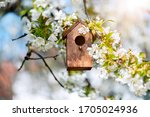 Birdhouse In Spring With...