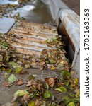 Rusted Storm Drain With Autumn...